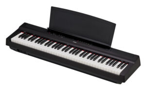 Buying Guide Our Top Instrument Recommendations Part 2 Yousician